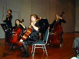 Viola, cellos and bass during the playing of